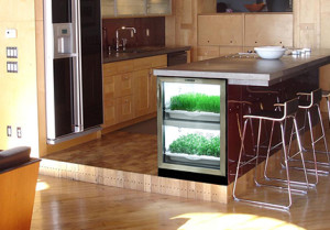 Mid-Size Kitchen with Urban Cultivator