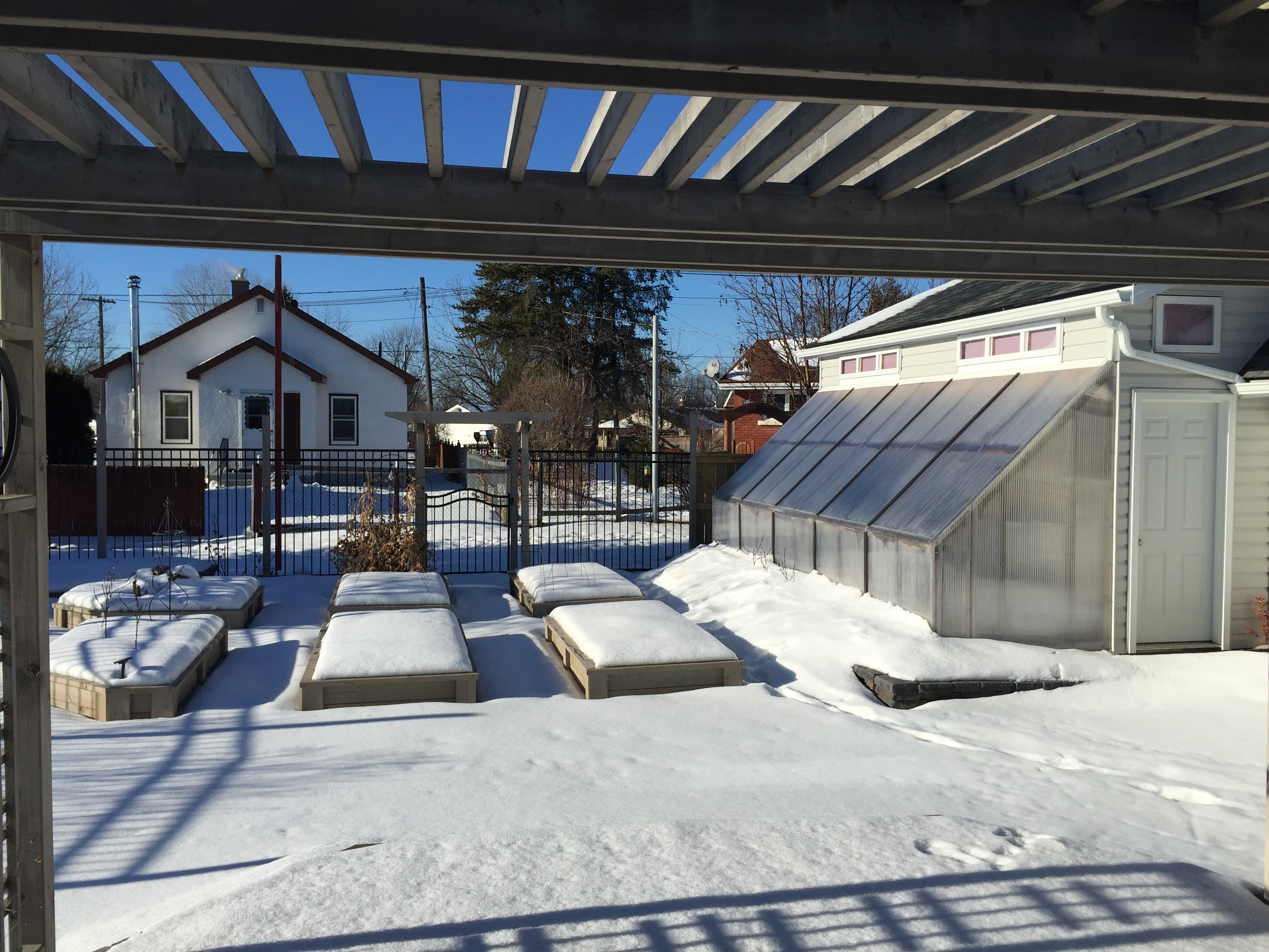 growing north urban farming in the north